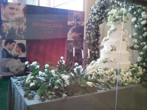 Breaking Dawn's wedding cake!!!