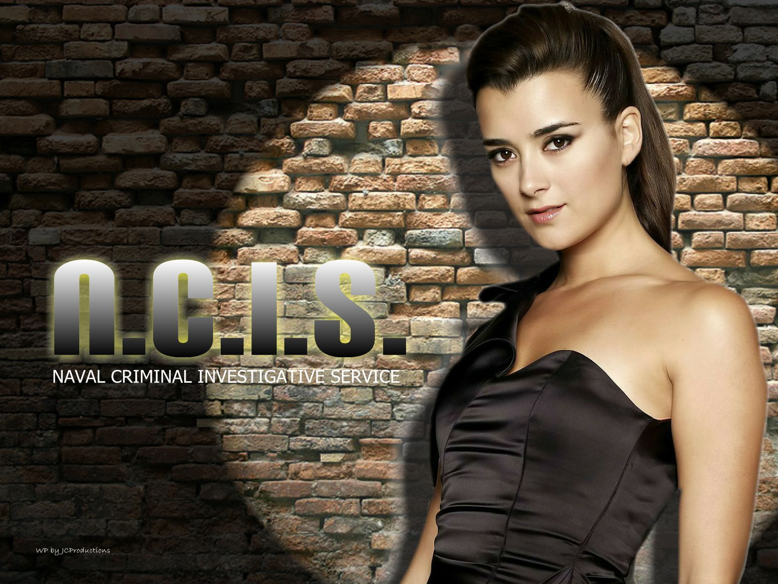 NCIS Girls Cote de Pablo aka Ziva David