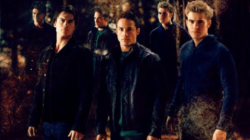 The Vampire Diaries images Damon, Tyler & Stefan HD ...