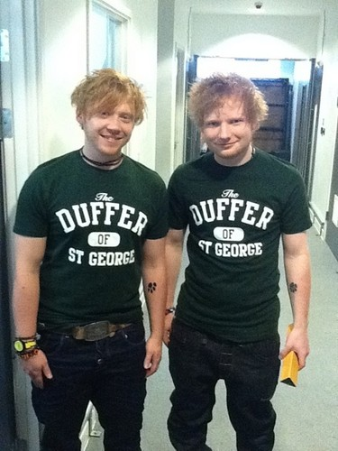 Rupert Grint wallpaper with a jersey called Ed Sheeran concerto