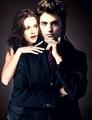 Edward & Bella Manips