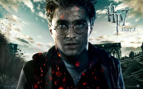 HP Hintergrund