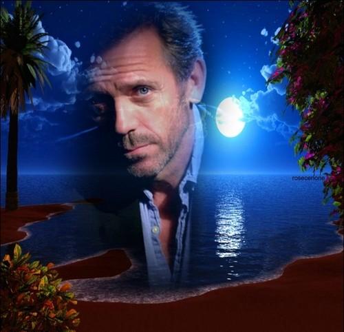 Hugh Laurie art
