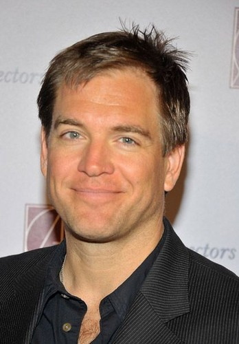 Michael - 15th Annual Art Directors Guild Awards - Arrivals - michael-weatherly Photo