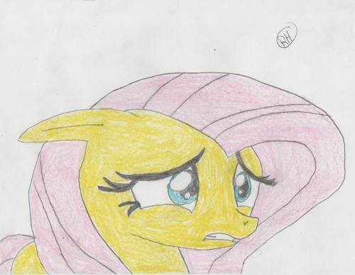 My drawing of fluttershy