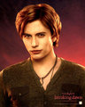 New Posters  From Breaking Dawn! - twilight-series photo