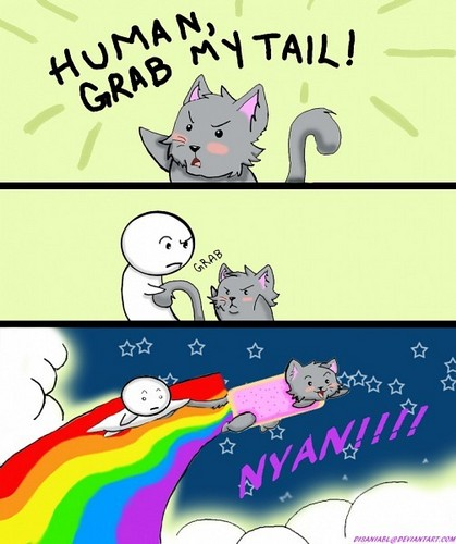 Nyan Cat karatasi la kupamba ukuta with anime entitled Nyan Cat