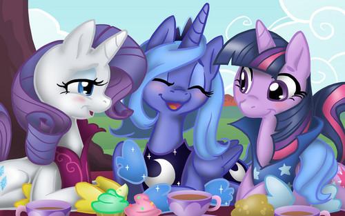 小马 picnic