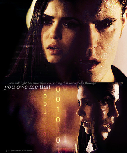 Stefan & Elena wallpaper possibly with a sign entitled Stelena