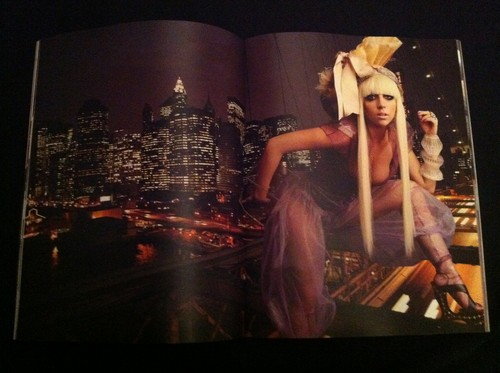 Super Lady GaGa Leslie Kee Book