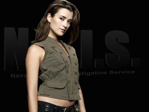 Navy CIS Hintergrund possibly containing a hip boot called Ziva David aka Cote de Pablo