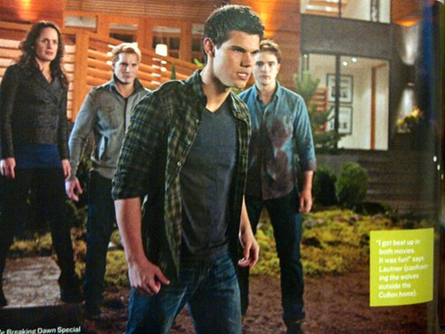 new breaking dawn still