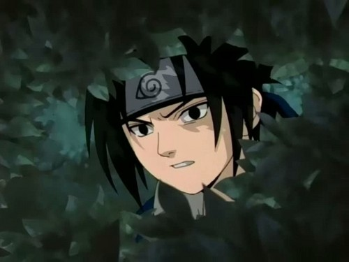 sasuke hiding in bushes