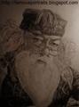 Albus Dumbledore - Portrait