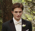 BDset_preview access hollywood - twilight-series photo