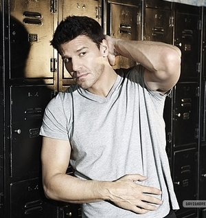 David Boreanaz wallpaper probably with a card index and a file entitled Boreanaz