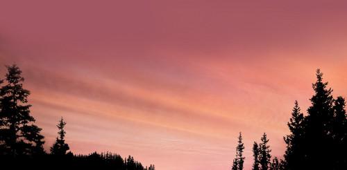 Breaking Dawn background