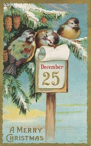 navidad card