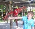Daniel in Sarasota Florida