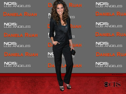 NCIS: Los Angeles wallpaper containing a well dressed person and a business suit called Daniela Ruah