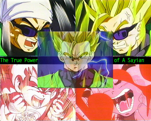 Dragon Ball Z wallpaper possibly with Anime called Gohan
