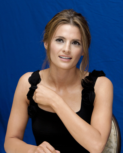Nathan Fillion & Stana Katic wallpaper containing a portrait called Hollywood Foreign Press Association - Press Conference