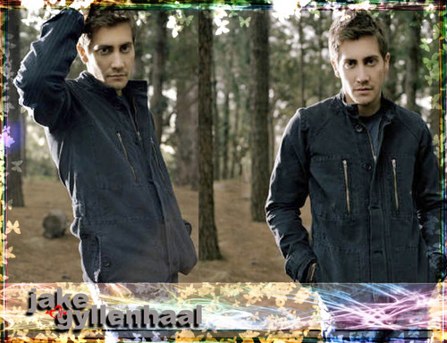 Jake Gyllenhaal wallpaper probably containing a street, a sign, and a mulch titled Jake Gyllenhaal