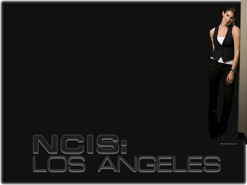 NCIS: Los Angeles پیپر وال with a well dressed person titled NCIS Los Angeles