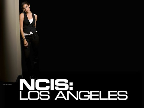 NCIS: Los Angeles hình nền probably with a bữa tối, bữa ăn tối dress entitled NCIS Los Angeles