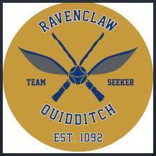 Ravenclaw Jersey