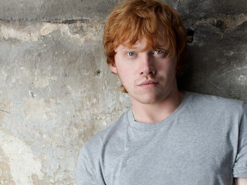 Rupert Grint wallpaper probably containing a portrait titled Rupert Grint wallpaper
