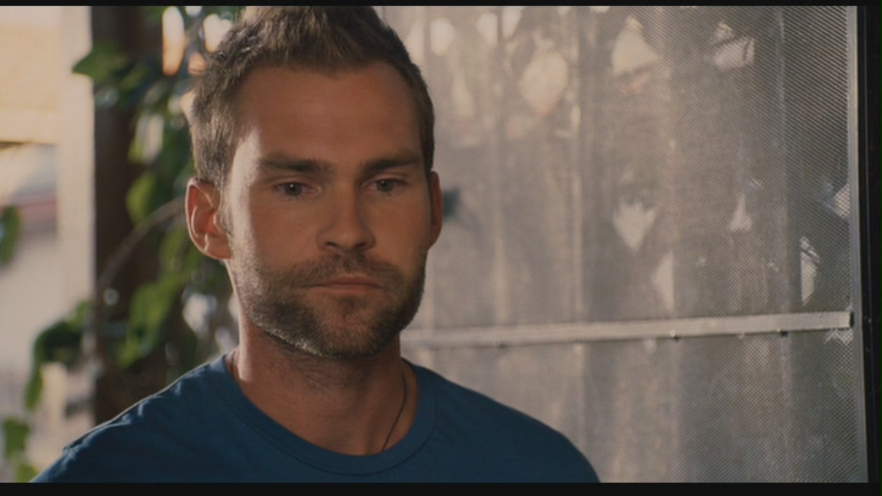 Seann William Scott in Role Models seann william scott