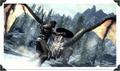 Skyriiim ! - elder-scrolls-v-skyrim photo