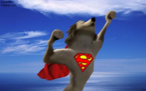 Super Humphrey!!