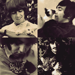 The Beatles with Kucing
