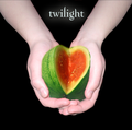 Twilight Funnies - critical-analysis-of-twilight photo