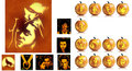 Twilight Saga Hallween pumpkin drawings - twilight-series photo