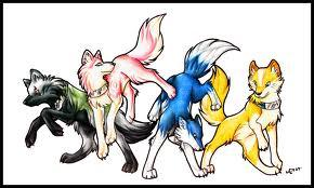 part of our pack
