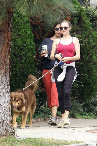 Amanda walking her dog, Finn, in Los Angeles - 10/24/11