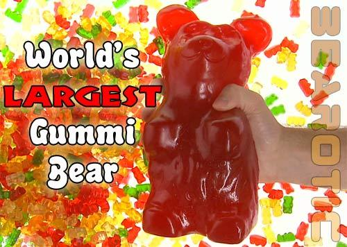Big gummy orso