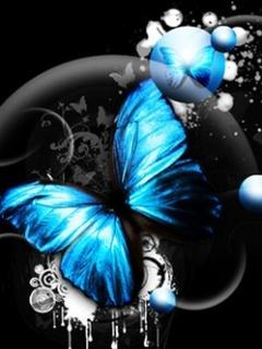 Blue con bướm, bướm