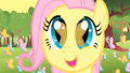 Cute Face  - fluttershy wallpaper