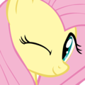 Cute Image  - fluttershy photo