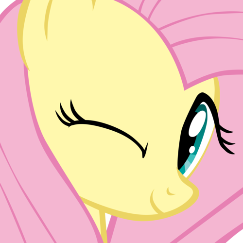 Fluttershy images Cute Image  HD wallpaper and background photos