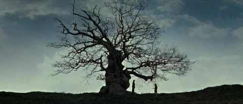 Severus Snape & Lily Evans wallpaper with a live oak, a beech, and an oak called DH2