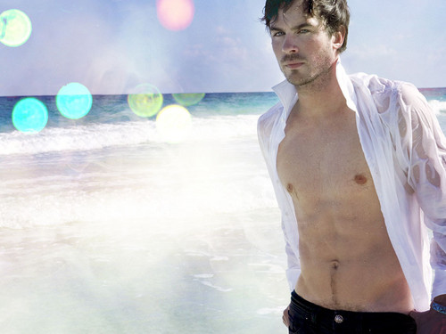 Ian Somerhalder wallpaper with a hunk titled Damon