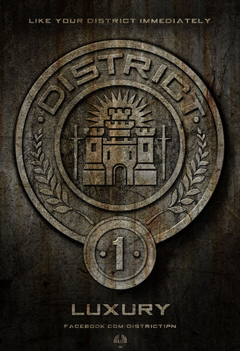 District 1 (luxury)