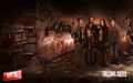 Falling Skies - falling-skies wallpaper