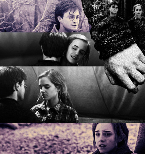 Harry and Hermione wallpaper probably containing a sign titled Fan Art