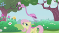 Fluttershy and Pink Flamingo  - fluttershy wallpaper